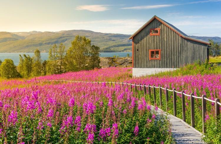 Finlandia e Capo Nord