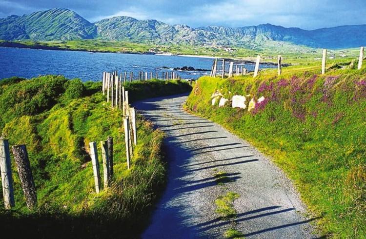 Noleggio auto - Irlanda