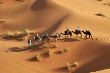 Il Deserto e le Kasbah del Sud