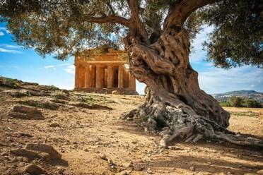 Sicilia paradiso mediterraneo
